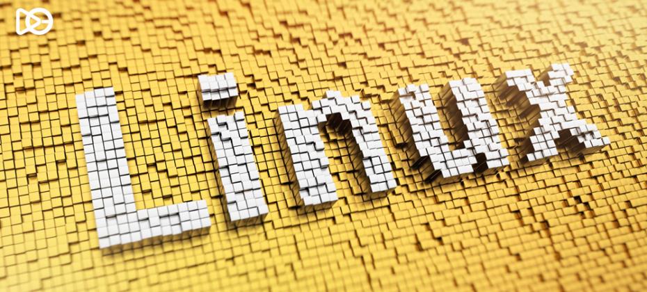 Temel Kali Linux Komutları